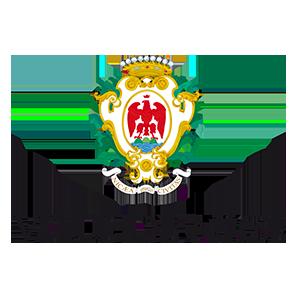 Logo de la Ville de Nice