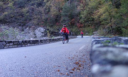 Photo de deux équipes de tandimiste entrain de pédalé dans une montée, la photo est prise au niveau de la route, en fond on voit une nature coloré de différents vert et orange